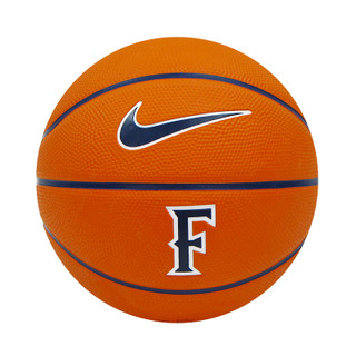 Titans Nike Mini Basketball
