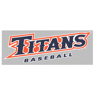 Titans Baseball Colorshock Decal