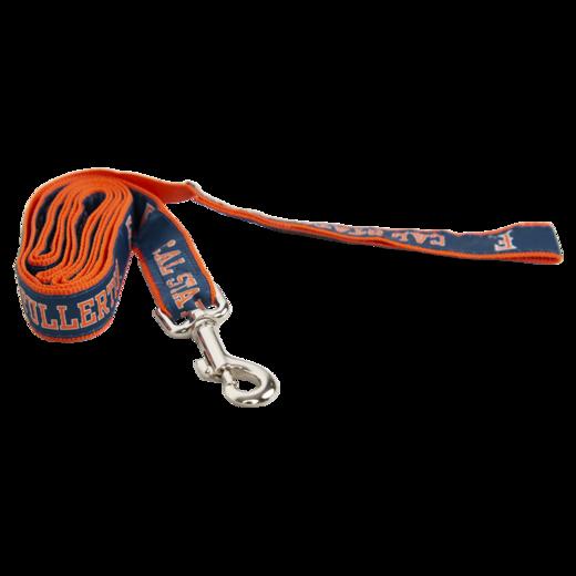 Titan Dog Leash
