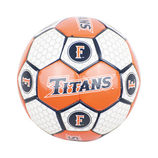 Titans Soccer Ball - Mini