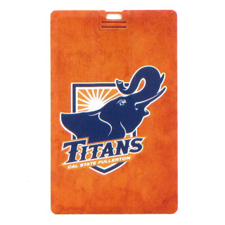 iCard 8GB Titans USB Drive