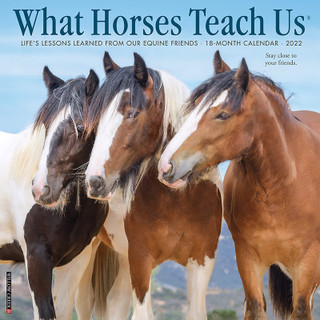 What Horses Teach Us 2022- default