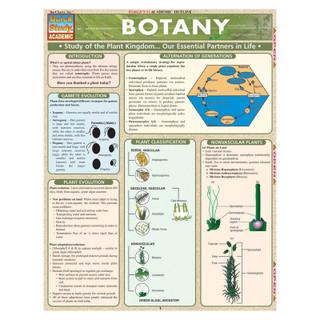 Barcharts Botany