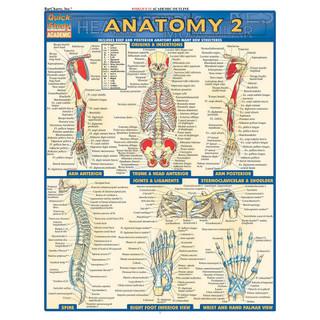 Barcharts Anatomy 2